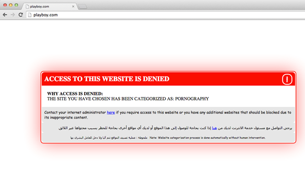 Figure 13: Descriptive Netsweeper blockpage for an attempt to access playboy.com