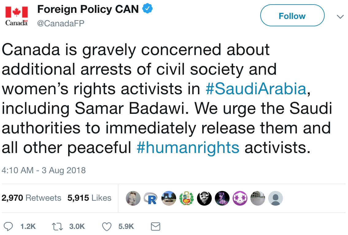 The Kingdom Came to Canada: How Saudi-Linked Digital