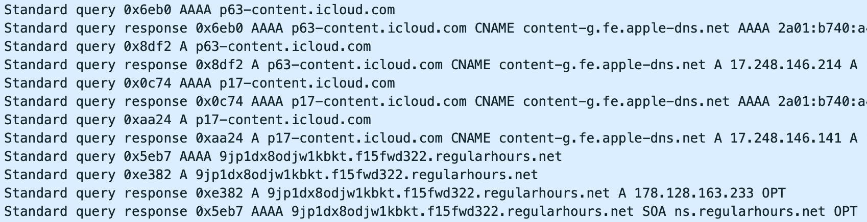 Screenshot of a 19 July packet capture from Almisshal's phone showing DNS lookups for iCloud Partitions immediately before a lookup for a Pegasus Installation Server.